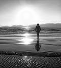 loneliness-298998_640