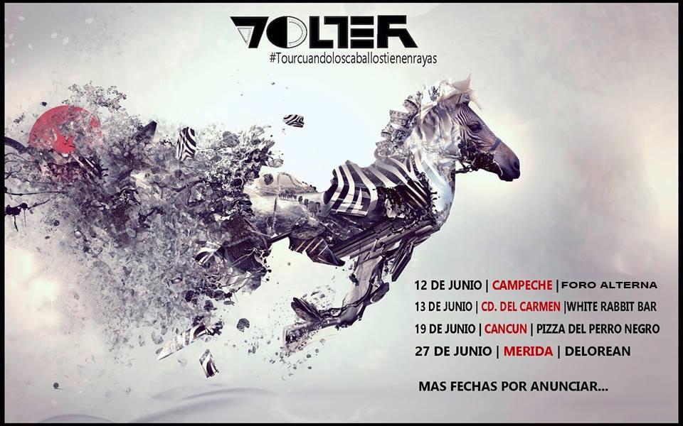 VOLTER-SHOWS
