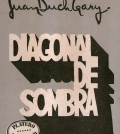 Diagonaldesombra_1