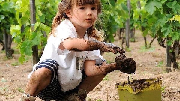 A la ingesta compulsiva de sustancias no nutritivas como tierra, piedras, papel, etc. se le conoce como Trastorno de Pica.