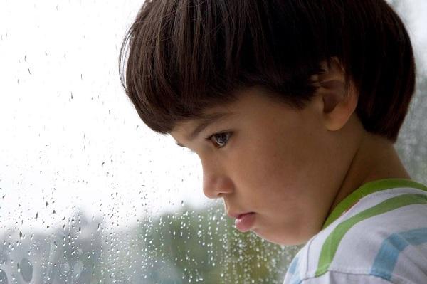 La condición autista suele relacionarse con un mal funcionamiento de varios circuitos cerebrales, sin embargo esto no es una causa tan específica.