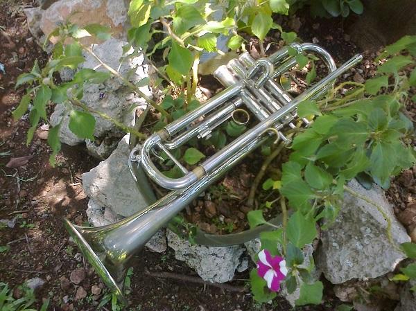 La trompeta de la charanga universal. Foto: Juan José Caamal Canul. Agosto de 2015.