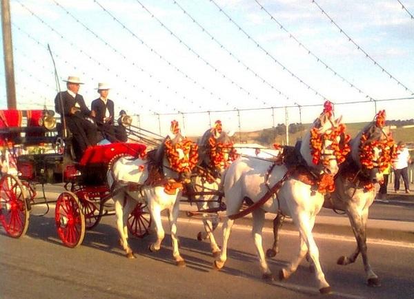 Calesa tirada por cuatro caballos andaluces, con personas vestidas a la usanza cordobesa.