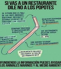 Popotes y Tapas_portada